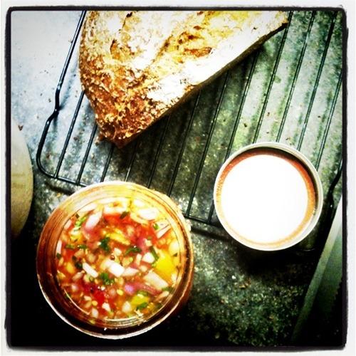 lactofermented salsa
